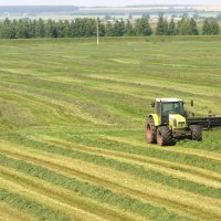 Russia - Agriculture - Western Sanctions Keep on Giving