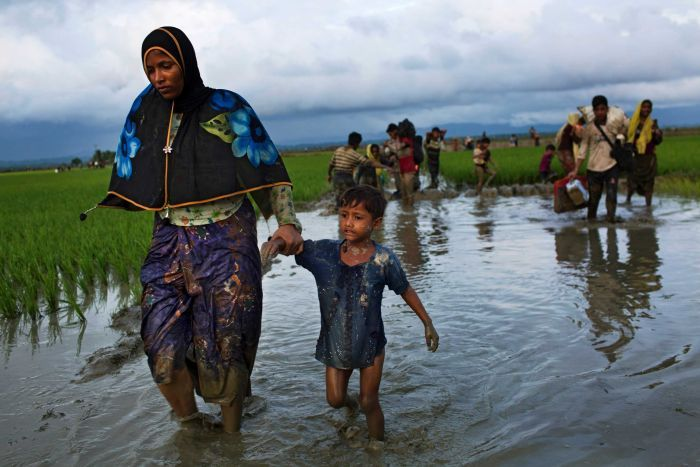 The Rohingya Crisis: Reality, Rumors andRamifications