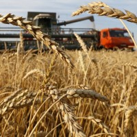 Russia squeezing US out as agricultural superpower