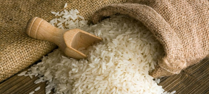 Scientists Worried as US Gives Green Light to Genetically Modified Rice