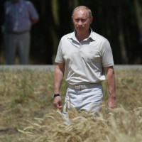 Russia positions itself to supply the world with organic food